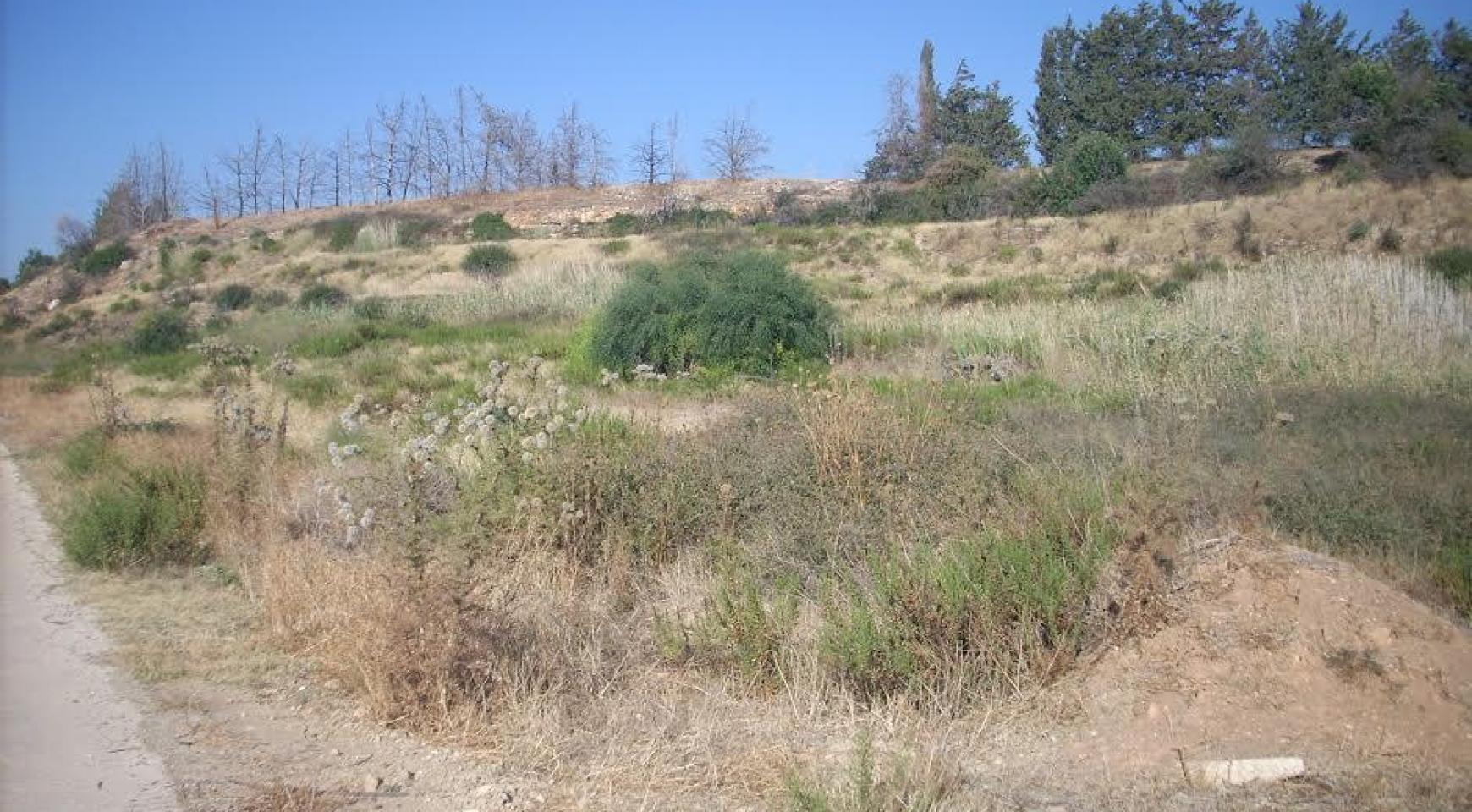 Large Building Plot with Sea Views in Kouklia - 4